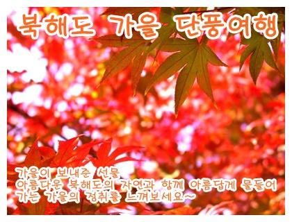 http://img4info.modetour.com/150/YOONS/momiji.jpg